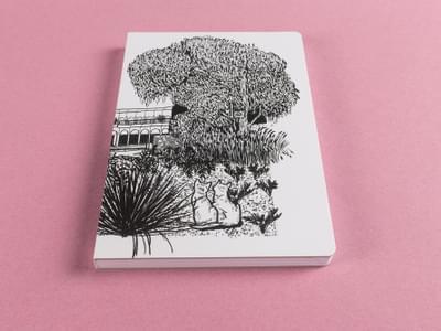 Tulip Sketchbook