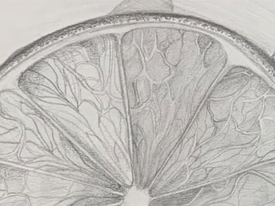 Drawing from Observation Zahra 3