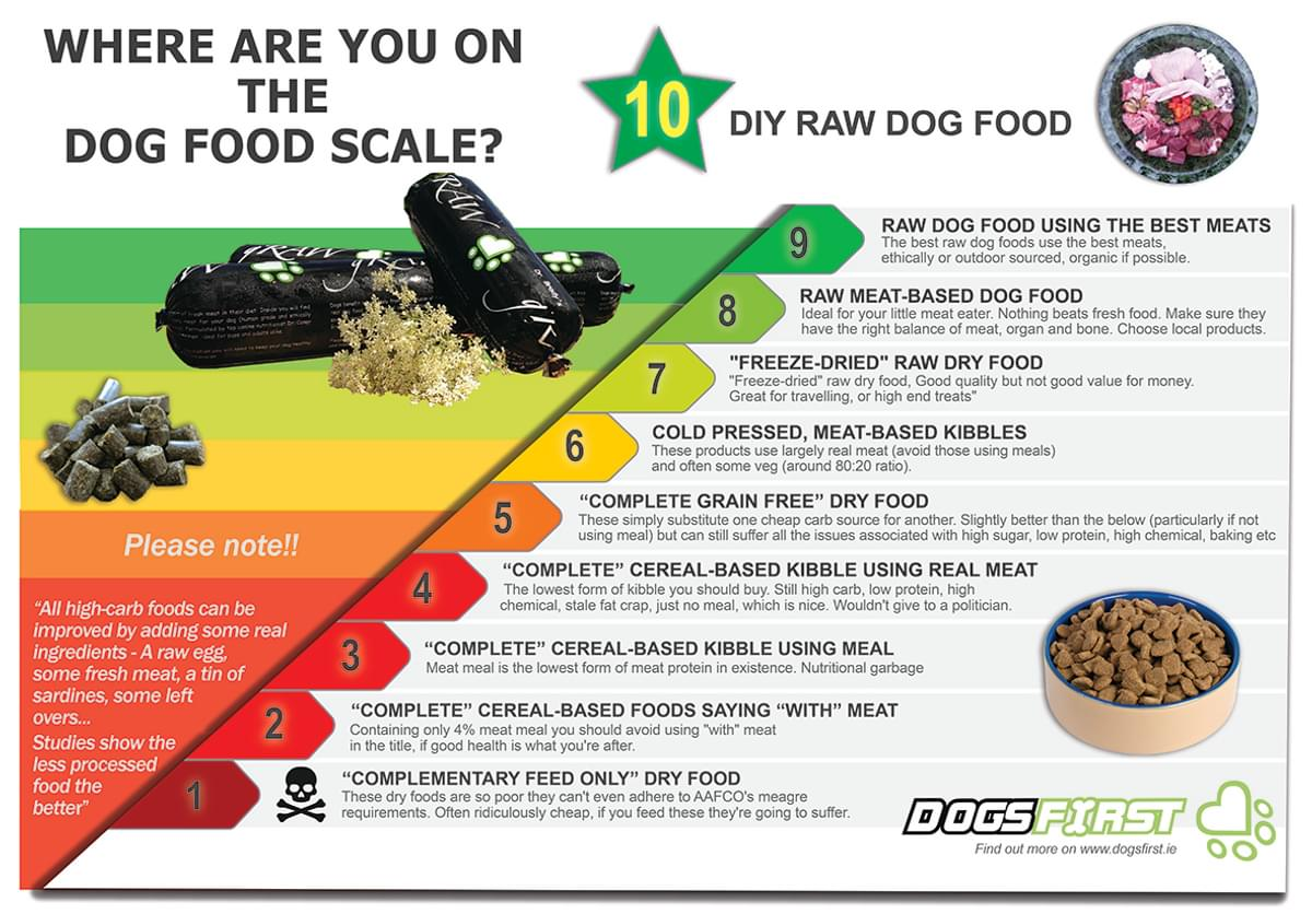 Dog food scale infographic larger version