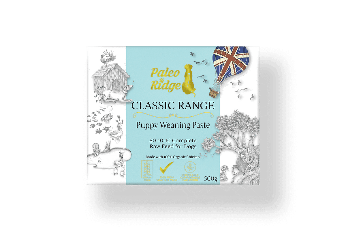 Classic Puppy Weaning Paste 500g
