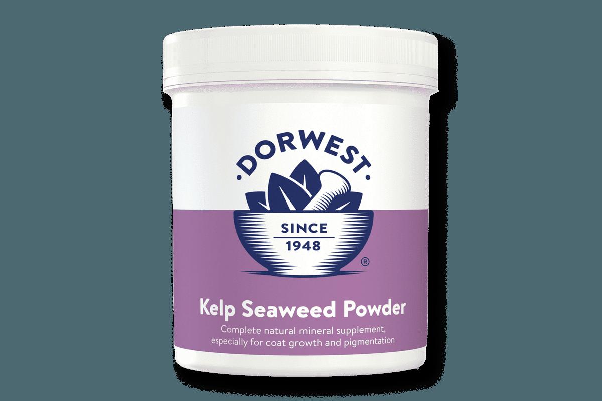 Dorwest Kelp Seaweed Powder 250g