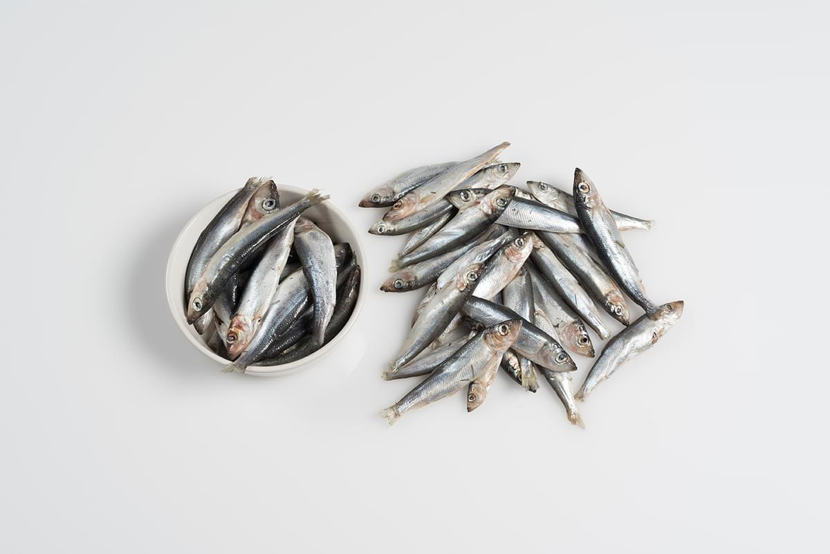 Fish Whole