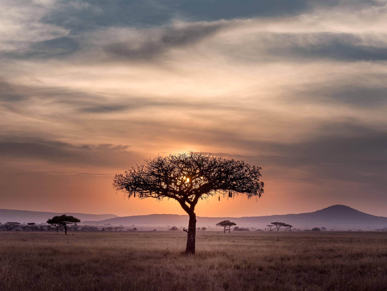 Insurtech Insights: Africa 3.0 Roundup