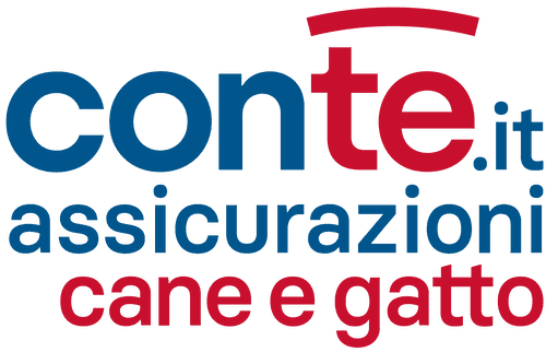 Helping ConTe.it Scale Insurance Products & Volume