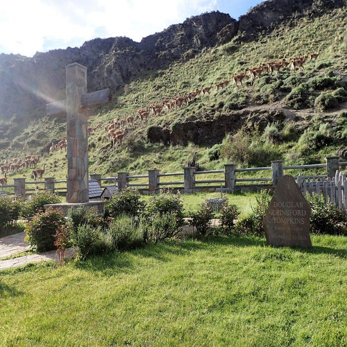 Tompkins Grave