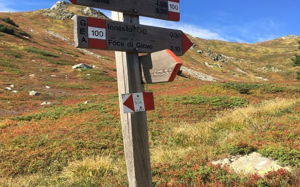 Another Signpost - Hurray!