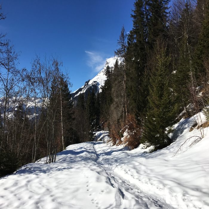 Snowy Trail To Lac Vert