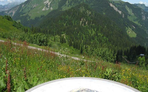 8  Mont De Grange From Col De Bassachaux