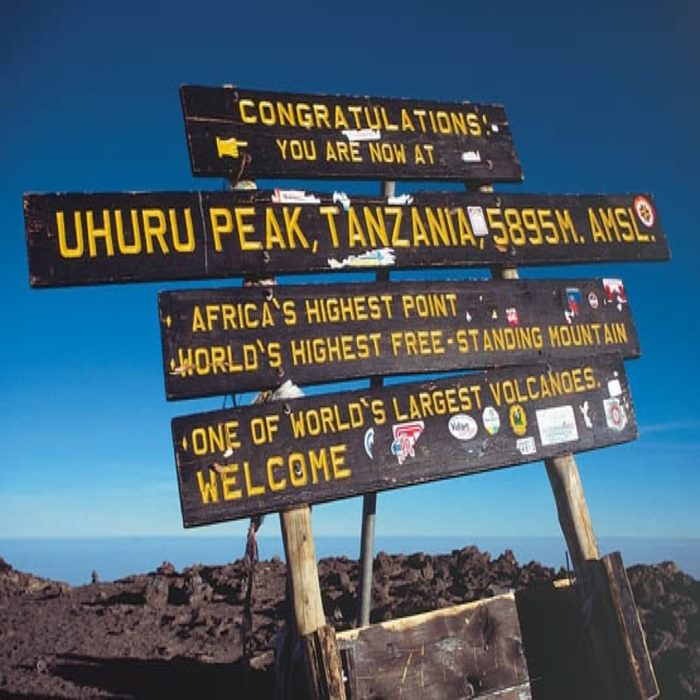 049 Sign Board At Uhuru Peak On The Roof Of Africa The Goal Of Many