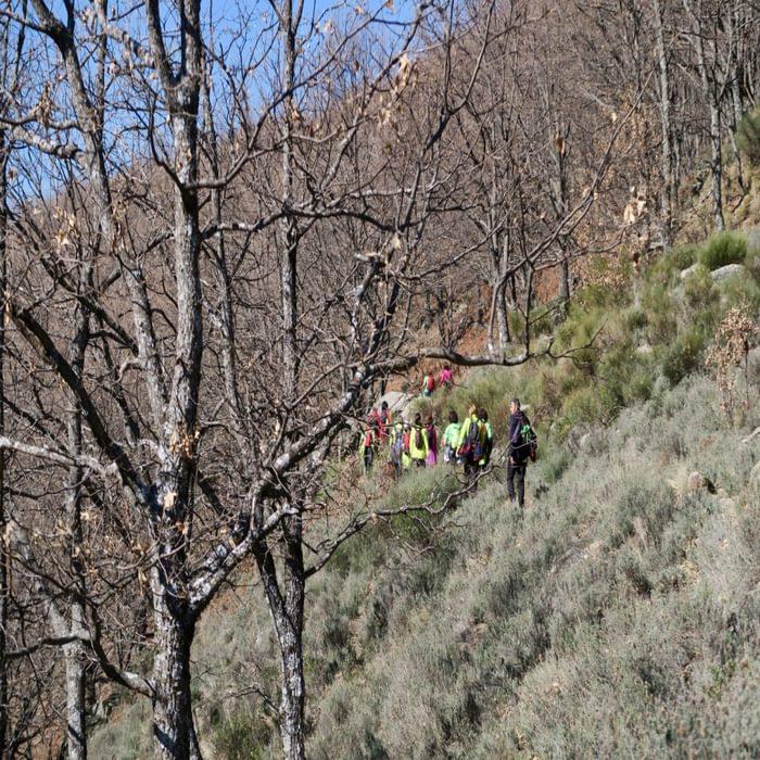 Walking towards the Collado de Las Losas