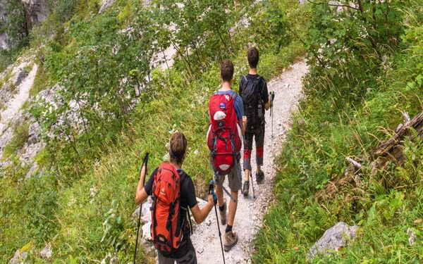 The serpentine trail through the Saugasse