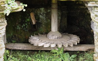 Paddled mill wheel