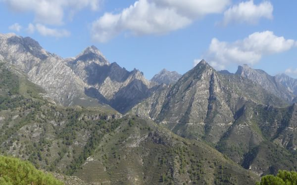 Looking back west on the ascent from El Acebuchal