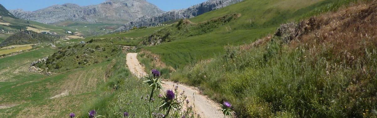 The track running westwards beneath La Sierra de Chimenea