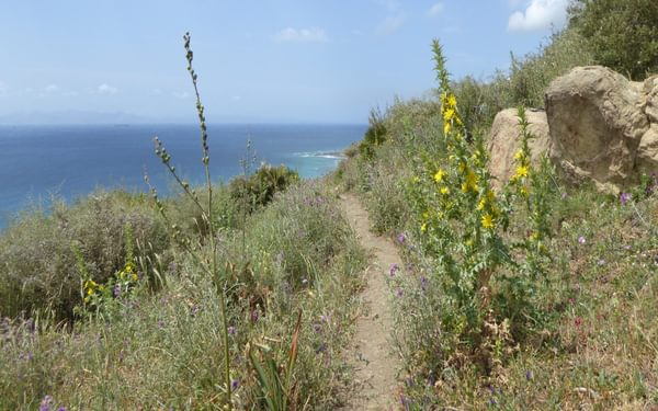 The coastal path leading towards Tarifa