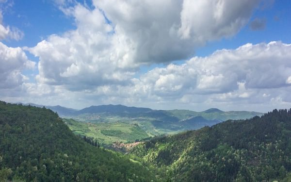 Wooded valley above the village of Ferrano, between Pontassieve and Consuma