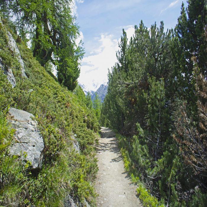 Balcony Path Above Pontresina