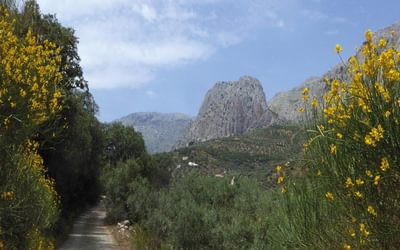 Heading west towards the Sierra de Enmedio (Day 6)