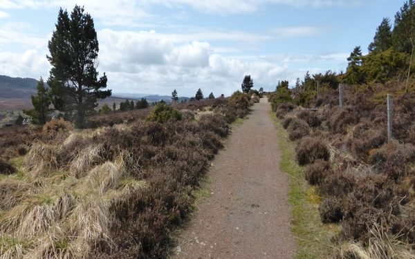 Quiet paths on moorland heading to Inverness