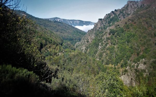 12 Mimente Valley