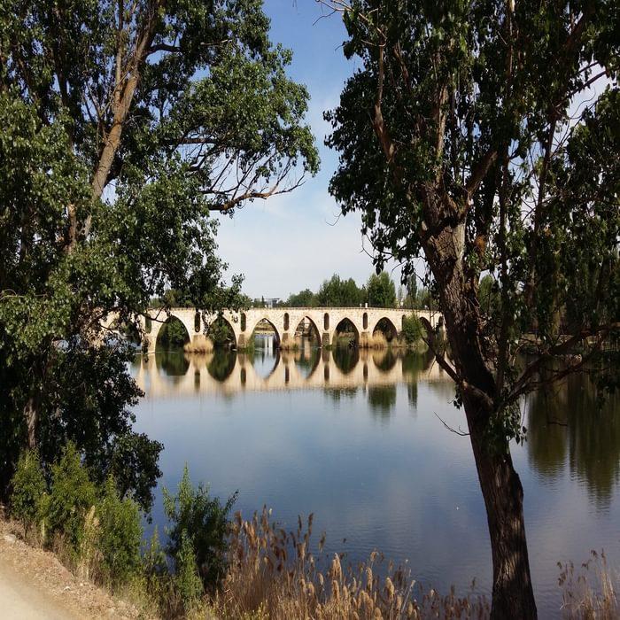 Roman Bridge at Zamora