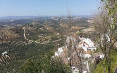 Towards Cordoba from Espejo
