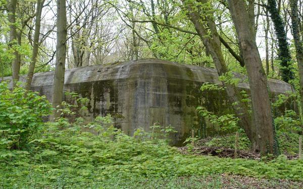 German bunker near Hoek van Holland; now a bat sanctuary