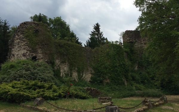 Ruins of Prény castle