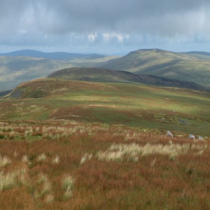 Walk4A The Open Moorland Of The North Pennines Is Sometimes Bleak But Always Beautiful