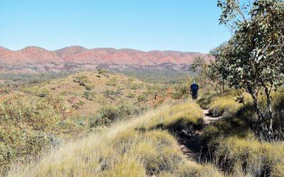 Admiring the red undulations of the Pacoota Range