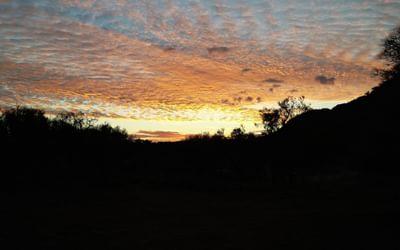 Sunrise at Jay Creek