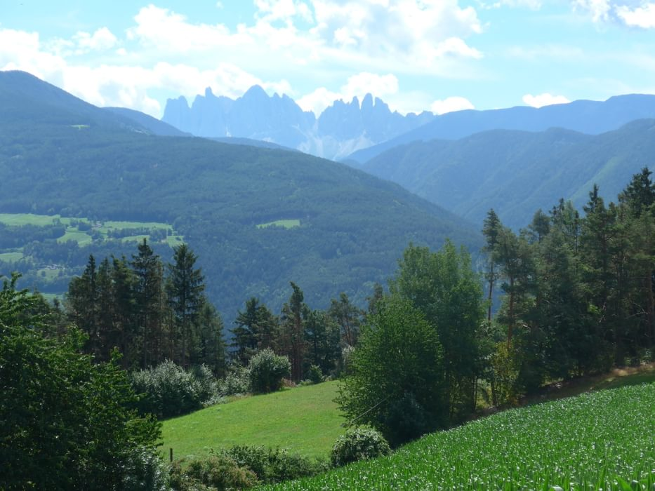Distant views of the Puez-Odle Dolomites range from the Keschtnweg