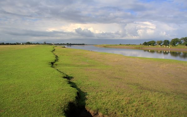 Pic3 Brackish Now The River Eden Makes Its Way Towards The Solway Marshes