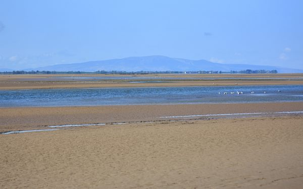 Pic5 From The Rockcliffe Marshes Looking Across The Channel Of The River Eden To Criffel In Dumfries Galloway