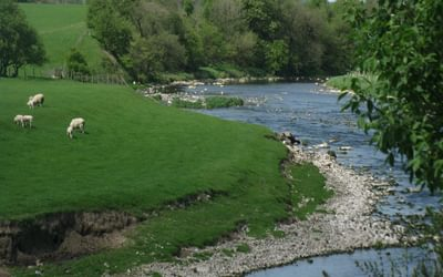 The River Ribble near Edisford - along the Ribble Way