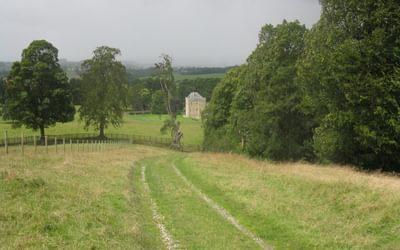 The parkland of Hellifield Peel