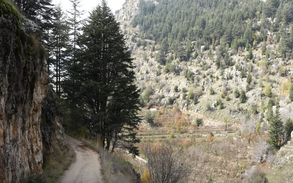 Easy walking through a small cultivated valley