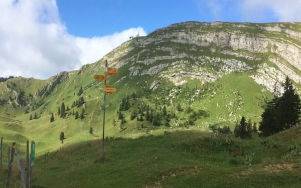 010 The limestone amphitheater and 'golf ball' summit of La Dôle (1677m), a prominent feature of the southern Jura