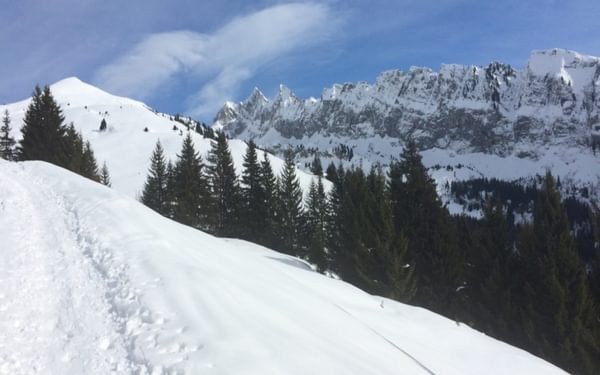 On the gradual ascent to the Col de la Golèse, overlooking the Dents d'Odda