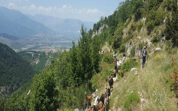 Ancient Drovers' Track in the Vella Valley