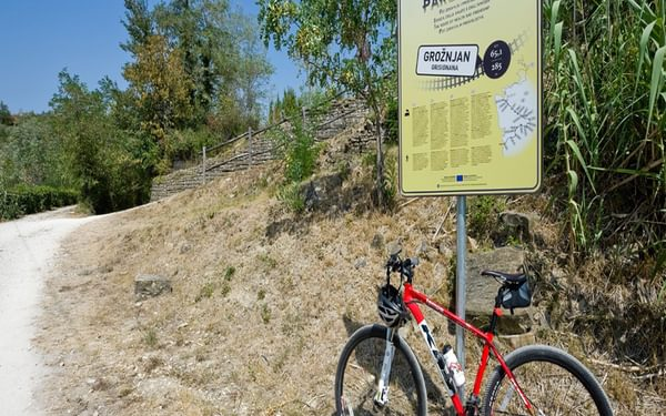 Parenzana cycle route just outside Grožnjan, Istria, Croatia. © Rudolf Abraham