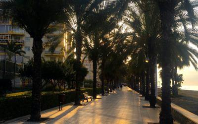 Palm lined promenade east of Malaga