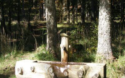 008 Krummenkreuzbrunnen, an old water fountain along the way.
