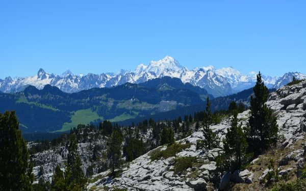 Mont Blanc rising above the limestone plateau on Le Parmelan