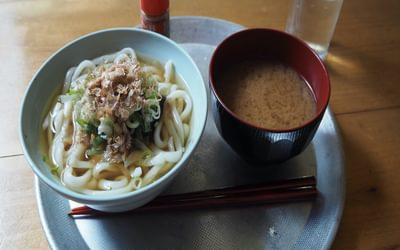 Udon noodles