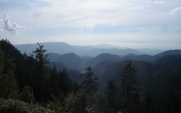 002 The northern Black Forest is densely covered in forest, almost as far as the eye can see