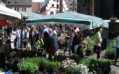 006 Freiburg is a bustling market town, and a university town - there is always something going on