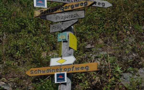 009 The Black Forest is criss-crossed by a trail network of about 24.000 marked and maintained path. This is an old signpost. Modern ones with more information on them have taken over.