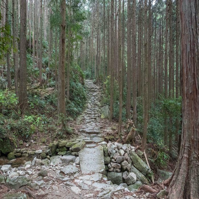 Ishitatami flagstone path