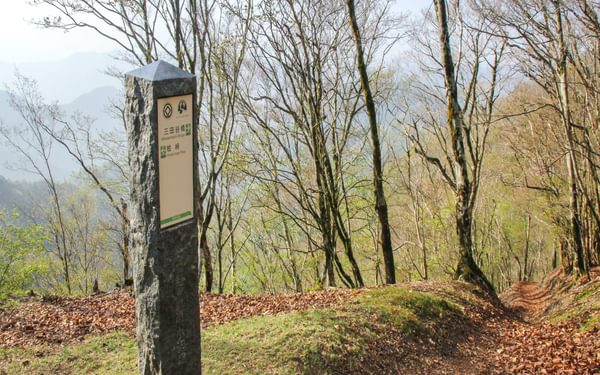 Stone and wooden waymarks